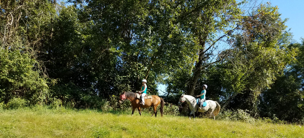 kentucky horse farm, horseback riding, equestrian center, ride horses, trail riding