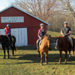 kentucky bed breakfast, Cincinnati bed breakfast, farmstay, kentucky horse farm