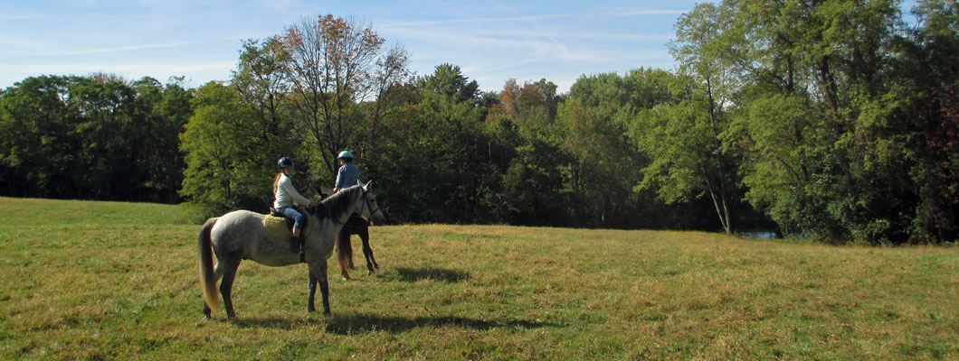 ride horses Kentucky, horseback riding Cincinnati,
