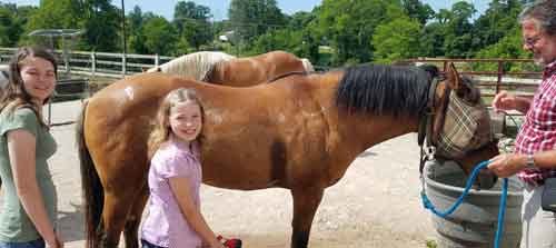 horseback riding, First Farm Inn, trail rides, Cincinnati