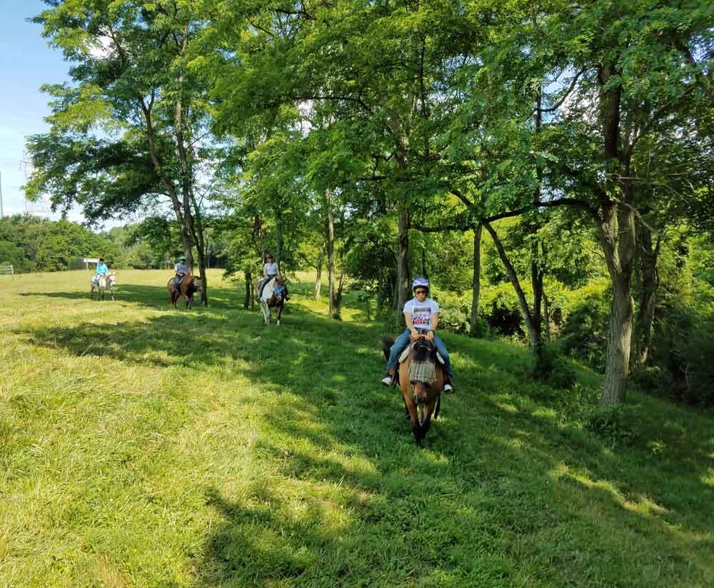 ride horses, horseback riding