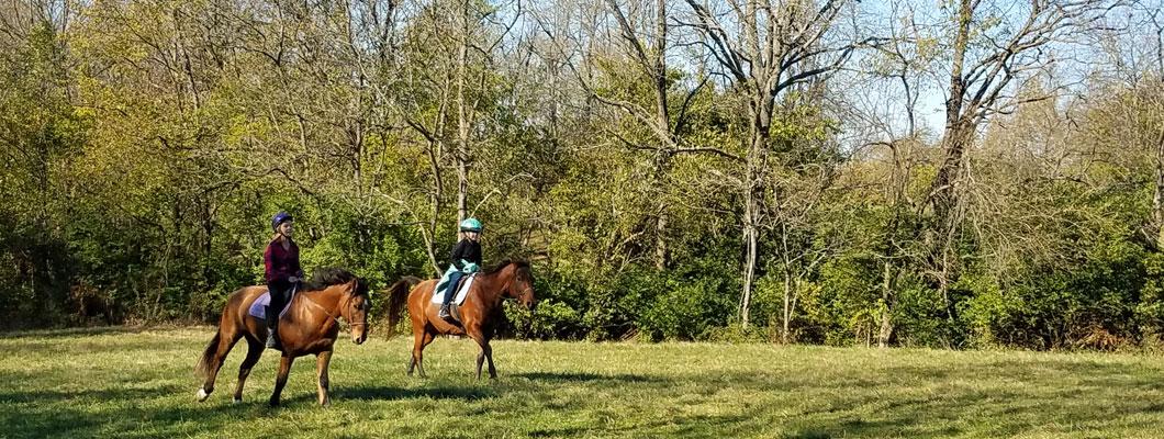 horseback riding Cincinnati, ride horses Kentucky, horseback riding Kentucky, trail ride Cincinnati, trail ride Kentucky, Kentucky horse farm