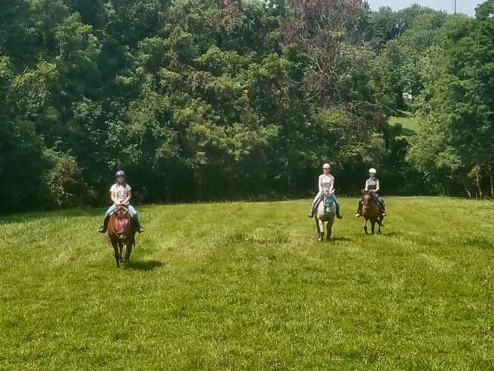 First Farm Inn, ride horses, horseback riding, Kentucky bed and breakfast