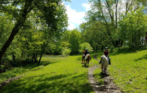 Summer trail ride at First Farm Inn Kentucky, path between the pond and barn.